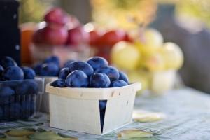 fruit-1004887_640.jpg